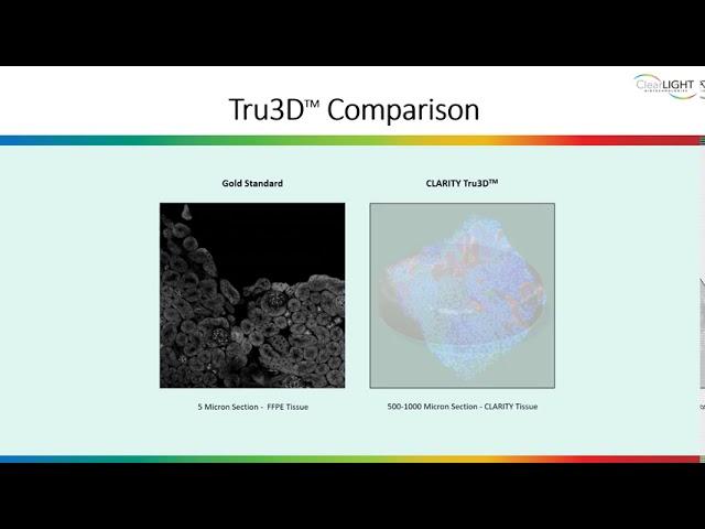 Why Choose 3D Imaging Over Standard 2D?