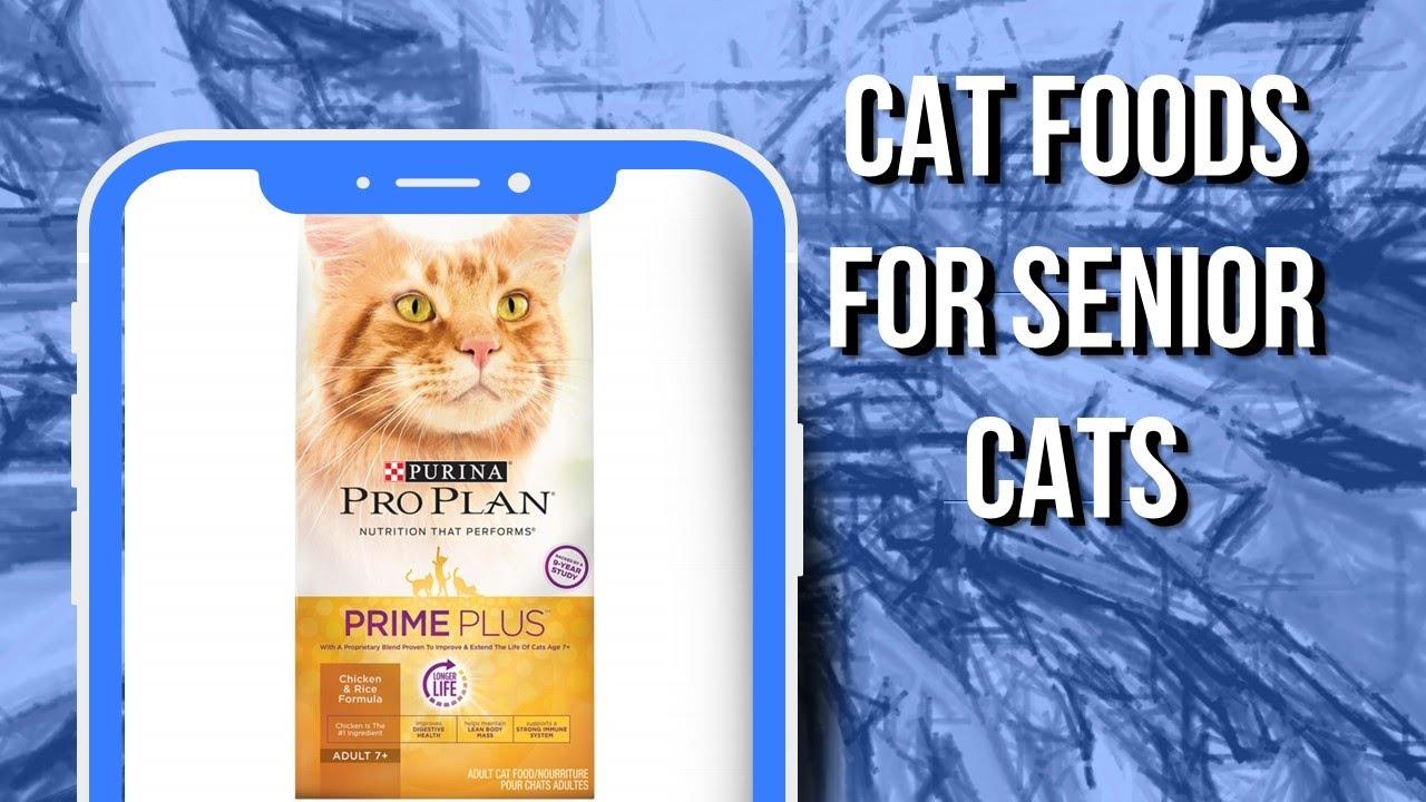 5 Cat Foods for Senior Cats in 2020