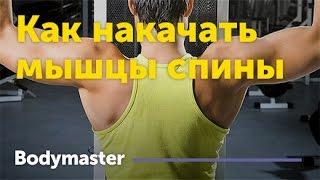 Как накачать мышцы спины(Как накачать мышцы спины Полная статья по тренировке спины http://bodymaster.ru/training/program/obshchie-trenirovki/myshtsy-spiny-kak-nakachat-mys..., 2017-03-08T09:48:30.000Z)