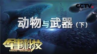 《军事科技》 20200129 动物与武器(下)| CCTV军事