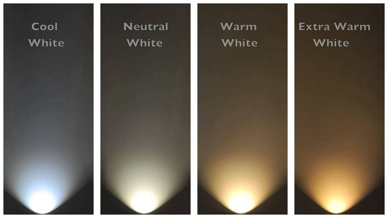 Fluorescent Light Bulb Spectrum