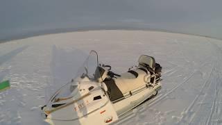снегоход тайга патруль 551 SWT белый