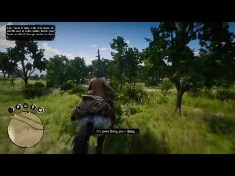 Red Dead Redemption 2 Horse Kick