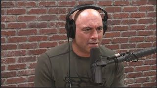 Joe Rogan Reacts to #MeToo, Latest Harvey Weinstein News