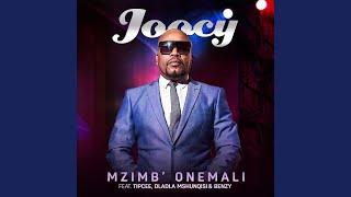 Mzimb Onemali (feat. Tipcee, Dladla Mshunqisi, Benzy)