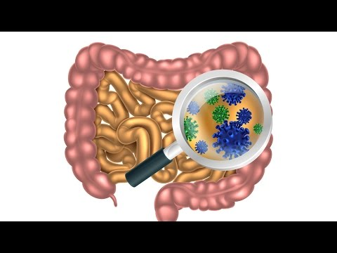 6 Steps to Heal Leaky Gut and Autoimmune Disease Naturally