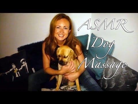 /(*-*)\ Binaural ASMR Doggy Massage & Channel Update /(*-*)\