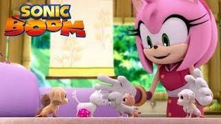 Download lagu Sonic Boom | Fuzzy Puppy Buddies 🐶 | Episode 43