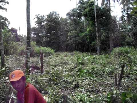 Quezon-Katague Land Fill 2