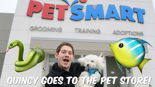QUINCY GOES TO THE PET STORE!
