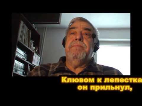 СУЛИКО  - Suliko -   new version - russian LYRICS -  GEORGIAN-  - ОРКИШ ЛЕШЕК ПОЕТ