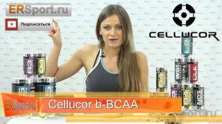 Обзор Аминокислот b-BCAA COR-Performance от Cellucor(Спортивное Питание Украина: http://goldbody.com.ua/ Купить Cellucor b-BCAA - http://goldbody.com.ua/tovar/cellucor-b-bcaa-cor-performance/, 2015-04-22T12:04:28.000Z)
