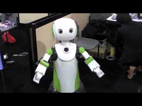 Vstone Robovie R3 Robot