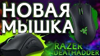 обзор на игровую мышку razer deathadder essential