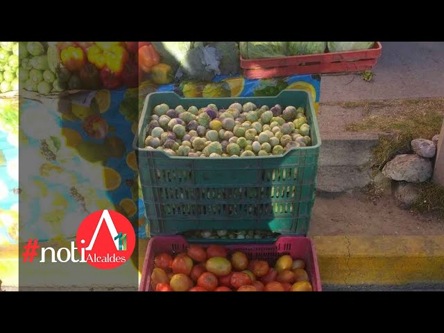 "#NotiAlcaldes: Aprueban programa de apoyo al comercio ""Consuma local"""