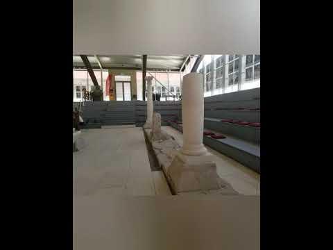 Muzeul Principia Alba