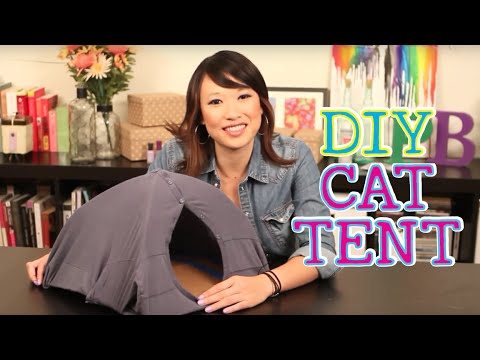 Download Homemade Cat Tent // DIY CAT TENT FROM AN OLD SHIRT!