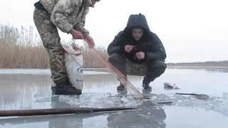 Зимняя рыбалка, снимаем сети, толстолоб, раки.  fishing with nets. video