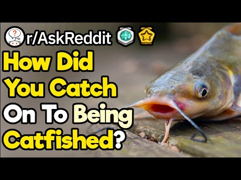 How Did You Catch Your Catfish Red Handed? (r/AskReddit)
