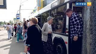 Петербуржцы обеспокоены отменой маршруток в 2020 году