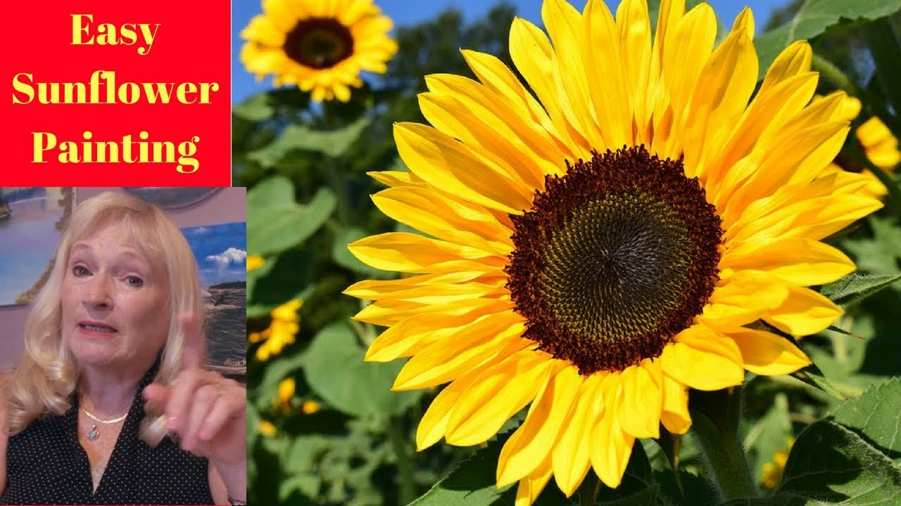 4252e01f90e How to paint a Sunflower with Acrylic Paint Lesson 1