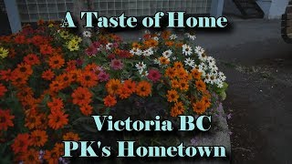 PK Gives a tour of his hometown in a vlog