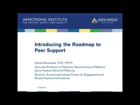 Introducing the Roadmap to Peer Support