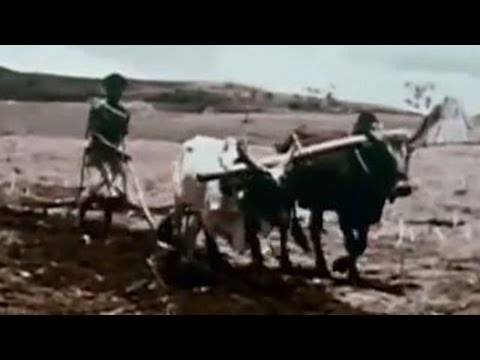 Tribes in Ethiopia, Africa's Ancient Kingdom | Film history documentary