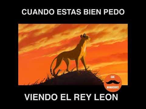 El Rey Leon - Saquen las chelas