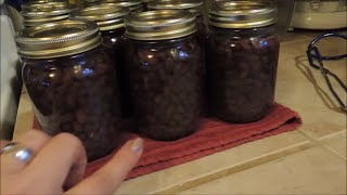 Pressure Canning Black Beans