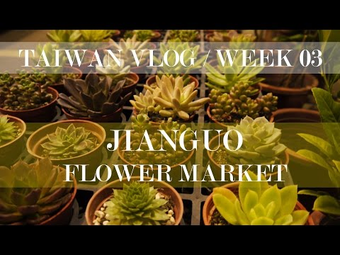 Taiwan college vlog - week 03