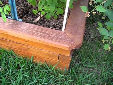 best wood for raised garden beds. Best Wood For Raised Garden Beds