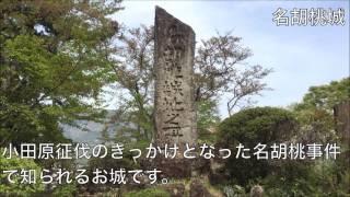 真田氏ゆかりの岩櫃城、白井城、名胡桃城、沼田城の史跡めぐり☆ 上州に...