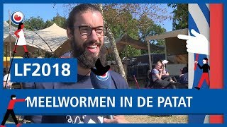 LF2018: Opzettelijk meelwormen in de patat op Welcome to the Village
