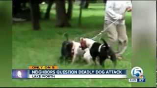 3 Pit Bulls Viciously Kill Poodle Caught On Tape