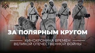 За полярным кругом. Использование оленей в годы Великой Отечественной войны