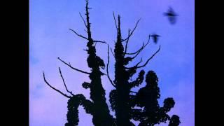 あぶらだこ - S60 ~ ROW HIDE (1985) 木盤