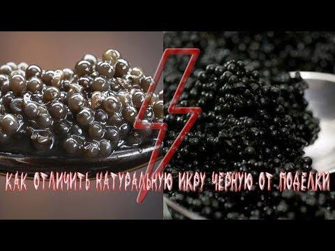 Как отличить черную икру от подделки - видео инструкция