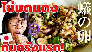 衝撃!タイの珍料理・アリの卵に挑戦するも、思わず…ไข่มดแดง|Ant Eggs Spicy Salad 🐜🐜🐜…