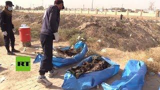 Siria: Hallan unos 1.500 cuerpos en una fosa común