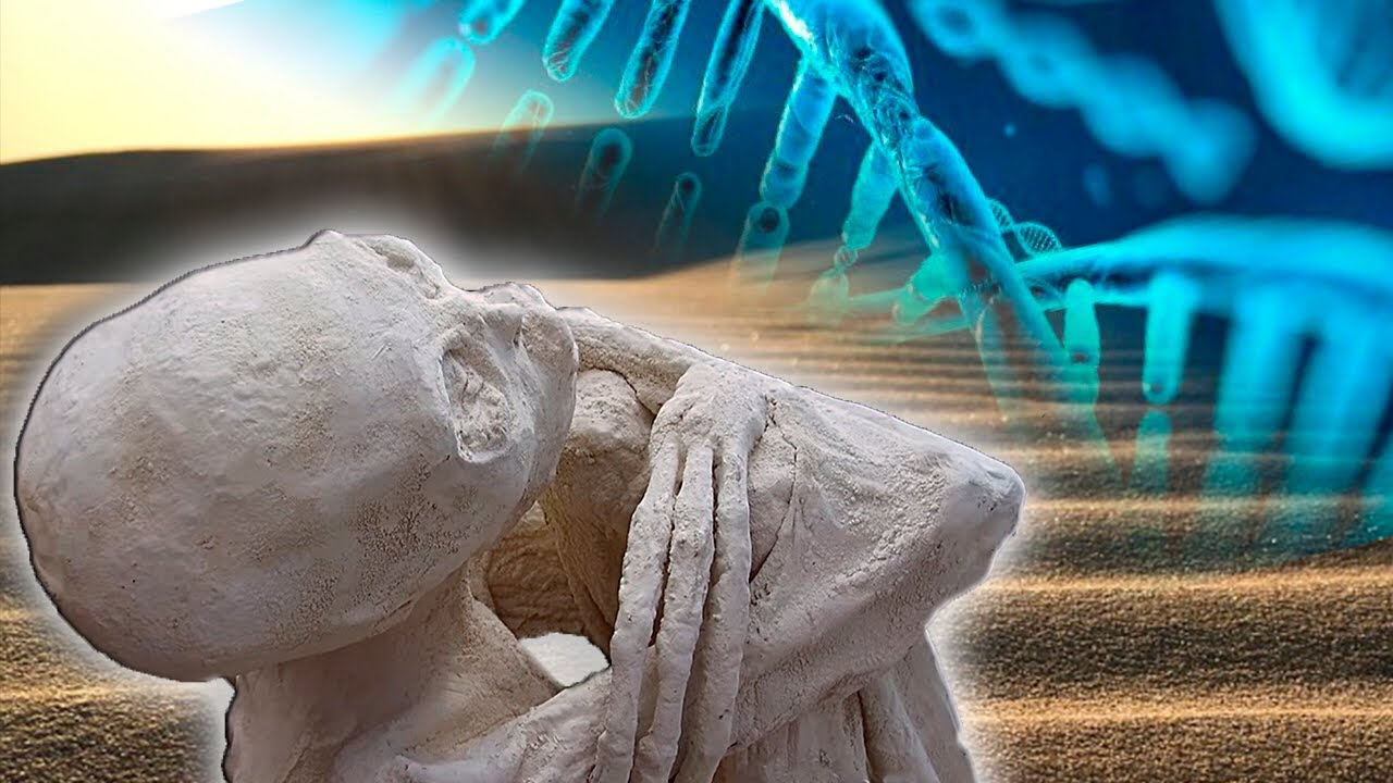 ¡Erstaunliche Forschungs-Ergebnisse - Die MUMIEN VON NAZCA Sind Echt Und NICHT Menschlich!