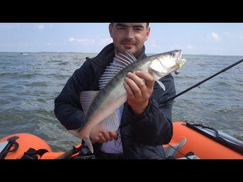 рыбалка в большом заливе