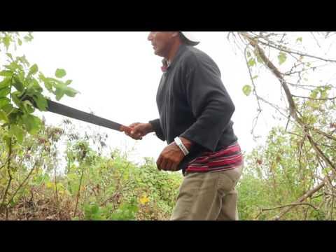 mIRdor de la Reserva Mesita Punta Colorada