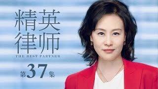精英律師-37-the-best-partner-37-靳東-藍盈瑩-孫淳等主演
