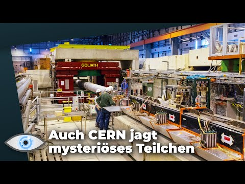 Fünfte Grundkraft: Findet CERN mysteriöses X17-Teilchen?