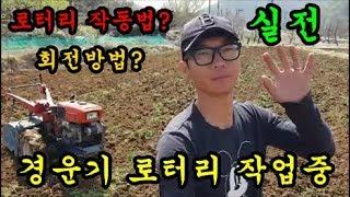 농기계 경운기 로터리작업 로타리 운전방법 고추밭 밭갈기 평탄작업 청도달콤한농장