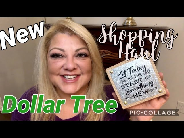 New Dollar Tree and Dollar Store Shopping Haul!!