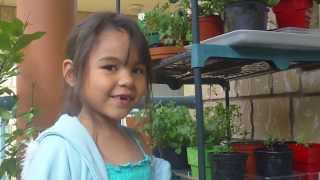 Karins Vegetable Container Garden on the Veranda