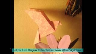 Easy Origami Dove