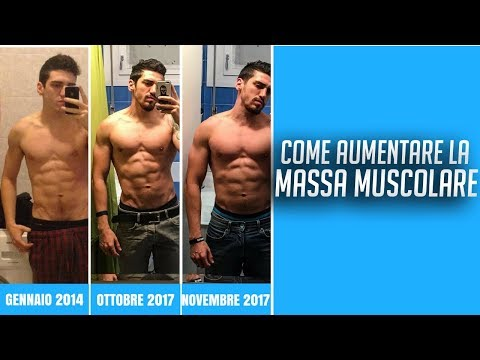 ultimo allenamento grasso muscolare